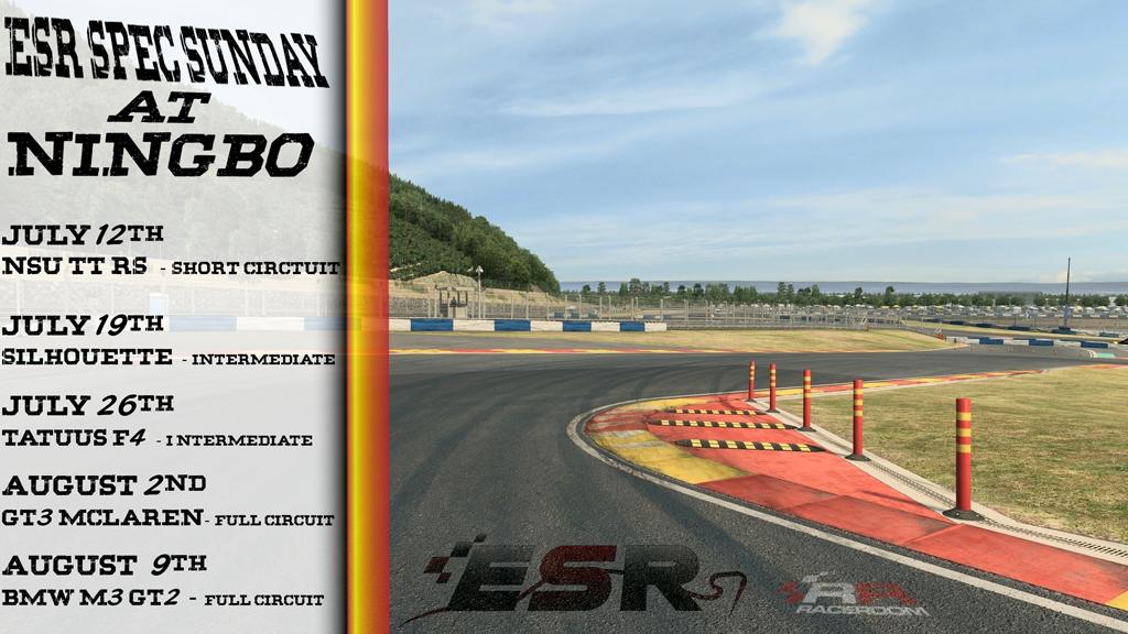 ESR Sunday racing series - Ningbo circuit in Raceroom